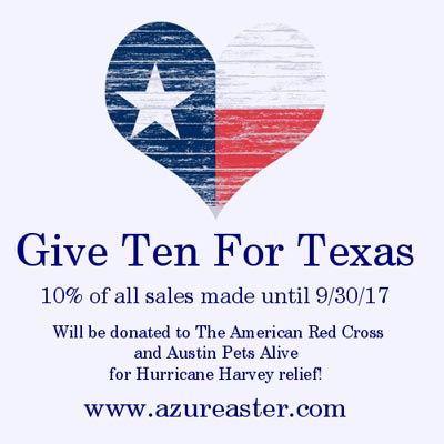 Give Ten For Texas
