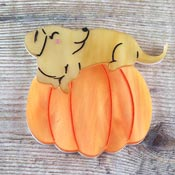 Pup-kin Brooch By Kimchi And Coconut In Orange