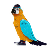 Corey The Macaw Brooch By Erstwilder