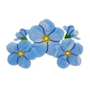 Don't You Forget About Me Forget Me Not Brooch By Erstwilder