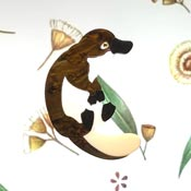 Payton The Platypus Brooch By Tantalising Treasures