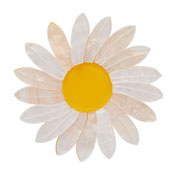 She Loves Me Daisy Brooch By Erstwilder