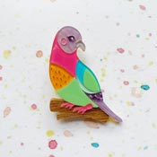 Skittles The Pink Necked Green Pigeon Brooch By She Loves Blooms