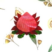 Waratah Brooch By Tantalising Treasures