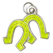 Horseshoes Charm