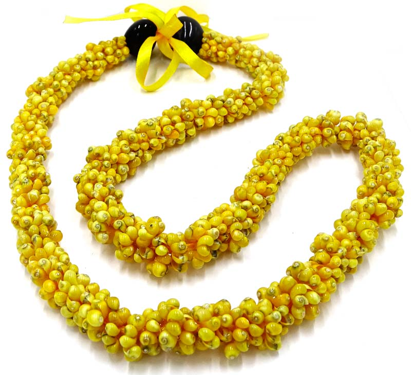 with hawaiian kukui lei torsade yellowshelllei shell necklace style lrg nuts yellow