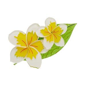 Lei It On Me Plumeria Frangipani Brooch By Erstwilder