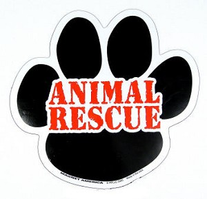 Animal Rescue Pawprint Magnet